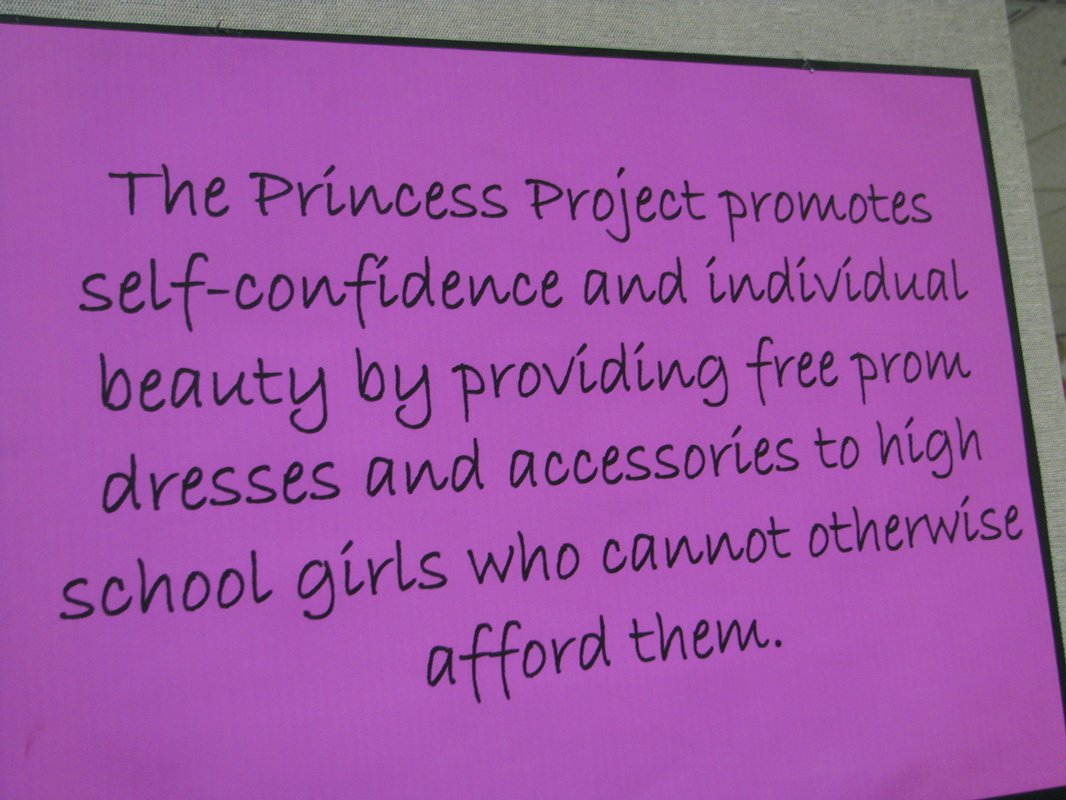 princess project Find great deals on ebay for project princess shop with confidence.