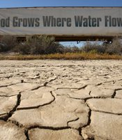A sign on a farm trailer reading 'Food grows where water flows,' hangs over dry, cracked mud at the edge of a farm April 16, 2009 near Buttonwillow, California. (Photo by David McNew/Getty Images)