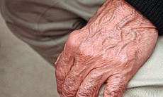 Dr. Edmund Ackell has beautiful hands according to his wife and photographer Judith Fox.