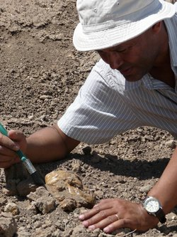 Dr. Zeray Alemseged re-enacts the discovery of the Australopithecus afarensis...