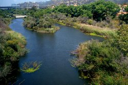 Volunteers will do a clean up of the San Diego River and surrounding estuary on Saturday, February 13, 2010. The river is seen here on July 16, 2008.