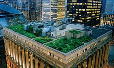 "A garland of nature crowns Chicago's City Hall, softening the hard edges of a town famous for steel and stone — and lowering summer temperatures on the roof. Inspired by a worldwide movement, Mayor Richard Daley has made Chicago North America's leading ""green roofs"" city. Photo by Diane Cook and Len Jenshel published in National Geographic Magazine, May 2009."
