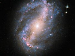 This image of barred spiral galaxy NGC 6217 is the first image of a celestial...