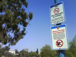 No smoking sign posted in Balboa Park.  Smokers can be fined up to $1000 for lighting up in San Diego city parks.