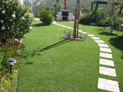 Diane Barnaba installed synthetic grass in the front and backyard of her home...