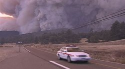October 2003 Wildfire scorched areas of Cuyamaca.