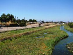 The algae-choked Paradise Creek flows between the transfer yard and the city ...