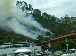 A brush fire broke out Thursday, July 15, 2010 in Mission Valley on the south side of Interstate 8 in San Diego, CA.