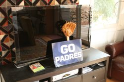 My daughter's memorial to the Padres' 2010 season.