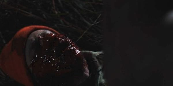 "It's all about the gore in ""Hatchet II"""