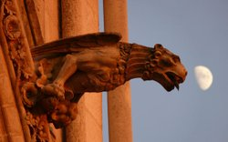 Gargoyle on Amiens Cathedral, the tallest Gothic church and largest cathedral...