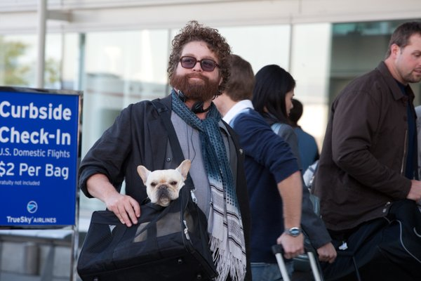 Are you tired of Zach Galifianakis' face yet?