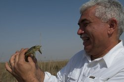 Dr. Azzam Alwash, director of marsh restoration project Nature Iraq, smiles a...
