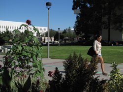 A student walks through the SDSU campus, which now qualifies for federal gran...