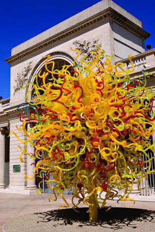 Dale Chihuly S Glass Work Photo Gallery Kpbs