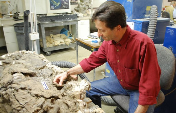 Tony Fiorillo with 70-million-year-old pachyrhinosaurus skull.