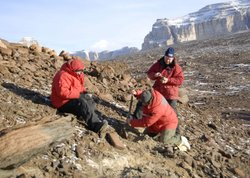 Peter Webb, Adam Lewis and David Harwood dig volcanic ash specimens to date t...