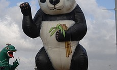 The Port of San Diego Big Bay Balloon Parade will feature the panda balloon among many others in this year's Dec. 30 parade.