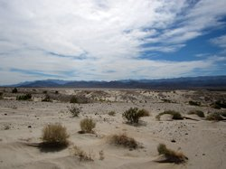 The Sierra Club and The Desert Protective Council have filed a lawsuit to blo...