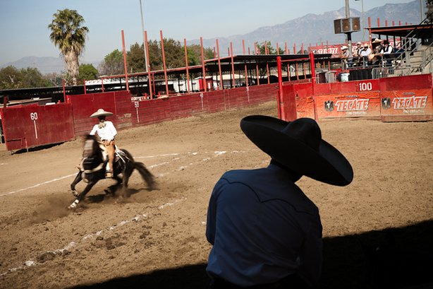 """One charro watches another in the very first of the charro tricks, the """"cala de caballo"""", which is meant to show off the horse's discipline."""