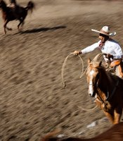 "A charro practices the ""floreada"" or lasso skills as he rides behind a wild mare."