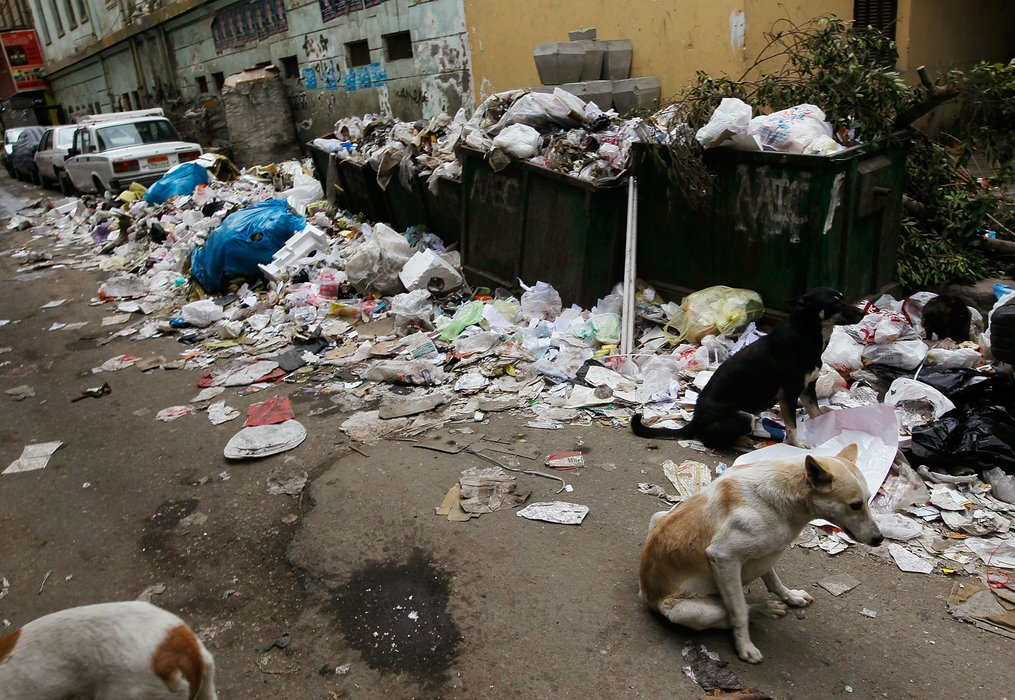What does litter mean in egypt — pic 1