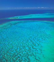 The Great Barrier reef off the northeast coast of Australia is an underwater wonderland, teeming with countless fish and other colorful sealife.