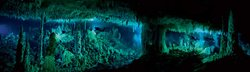 Wes Skiles' photo of underwater caves in the Bahamas. The Cascade Room, some 80 feet beneath the surface, leads divers deeper into Dan's Cave on Abaco Island in the Bahamas. The flooded caves, containing both fresh water and sea water, are called blue holes—and are extremely dangerous to dive in.
