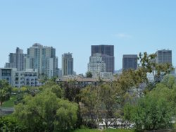 A view of San Diego's skyline.