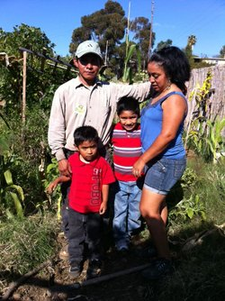 Viviana and Erasmos Marroquin and their two young sons grow vegetables from t...
