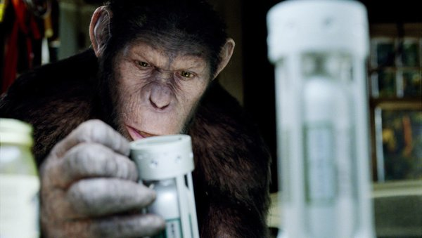 """What happens when apes get smart. """"Rise of the Planet of the Apes' gives us the backstory to the classic 1968 film """"Planet of the Apes."""""""