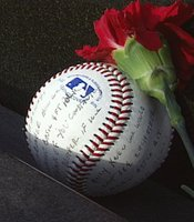 A baseball and flower left at the vietnam Veterans Memorial.