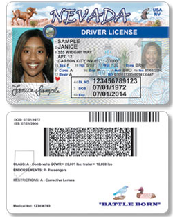 Nevada Mulls Driver S Permits For All Including