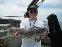 Larry Allen, a coauthor of the study, with a barred sand bass.