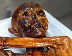Frontal shot of Otzi's face