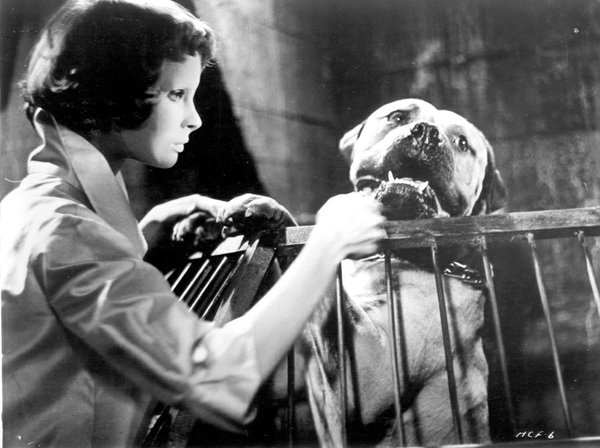 "Georges Franju's ""Eyes Without a Face"" is the second revival film showing at the 2011 Horrible Imaginings."