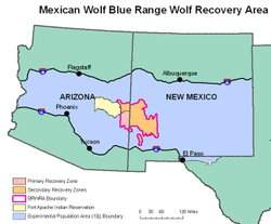 This map shows the Mexican gray wolf reintroduction location along the Arizona and New Mexico border.