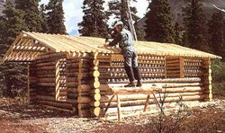 Dick Proenneke building his own cabin in the wilderness at the base of the Al...