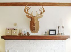 """""""F*&% your cardboard taxidermy"""" from the tumblr F*$% Your Noguchi Coffee Table."""