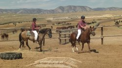 In Gunnison, Utah, state prison inmates work to train wild horses so they can...