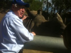 U.S. Interior Secretary Ken Salazar pats a rhino at the San Diego Zoo. April ...