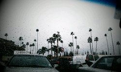 San Diego Endures Severe Weather Events