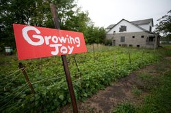 """Growing Joy"
