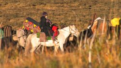Yama and baby ride to Fall Pasture, eastern Tibet.