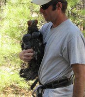 Jacobson holds a bald eagle nestling close.