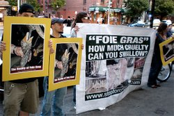 The APRL has been protesting in front of restaurants that sell foie gras, including here in San Diego. Photo courtesy of APRL.