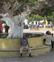 Daily life in the main plaza of San Fernando, Tamaulipas, Mexico.