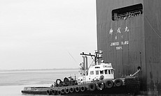 The Jinsei Maru pulls in to the Port of San Diego on June 19, 2012, carrying thousands of automobiles from Germany.