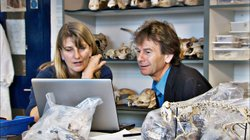 Michael Wood and Carenza Lewis look at the Kibworth Dig results