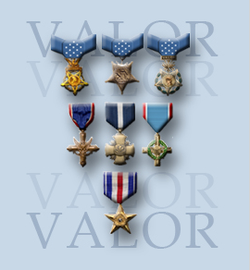 Department of Defense Valor website